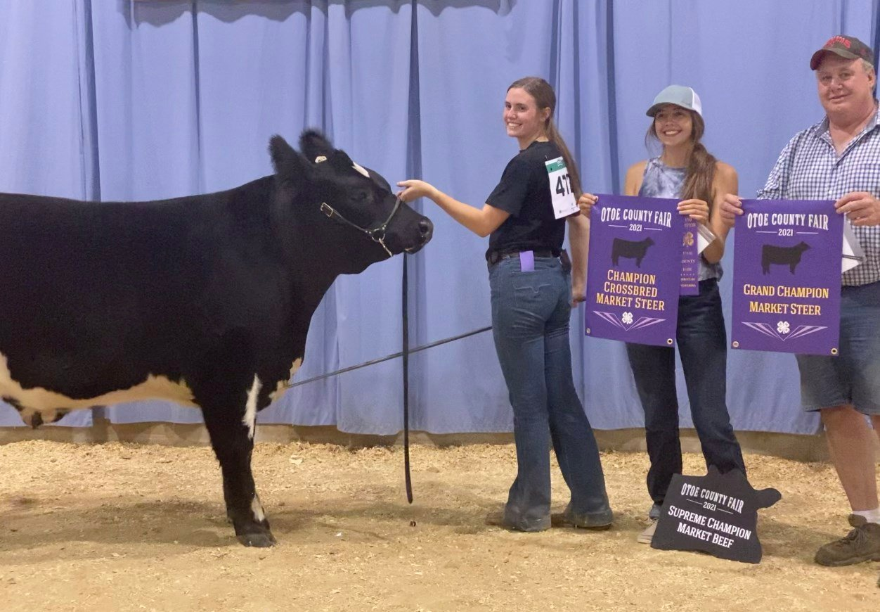 Family traditions, fresh starts pack the house at 4-H beef show